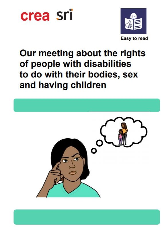 Meeting On The Rights Of Persons With Disabilities (Easy To Read Document)